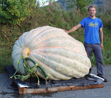 Big ol pumpkin.jpg
